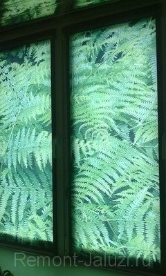 44 - Фото жалюзи на пластиковые окна
